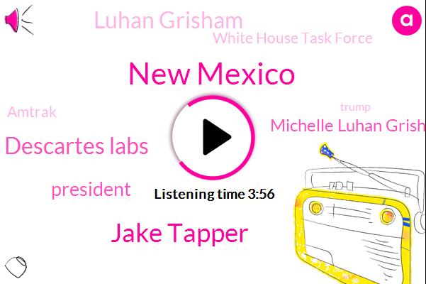 New Mexico,Jake Tapper,Descartes Labs,President Trump,Union,Michelle Luhan Grisham,Luhan Grisham,White House Task Force,Amtrak,Donald Trump