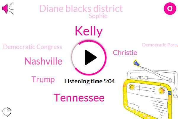 Tennessee,Kelly,Nashville,Donald Trump,Christie,Diane Blacks District,Sophie,Democratic Congress,Democratic Party,United States,Twenty Twenty,Vice Chair,Senate,Gunston America,Justin Canoe,Attorney,Congress,Mariah Phillips