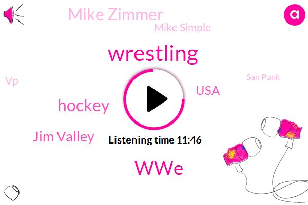 WWE,Wrestling,Hockey,Jim Valley,FOX,USA,Mike Zimmer,Mike Simple,VP,San Punk,NFL,CNN,Youtube,Bryan Alvarez,Renee,Booker T.,Danny Burch,Mike,Tnt Tnt,Mike Bennett