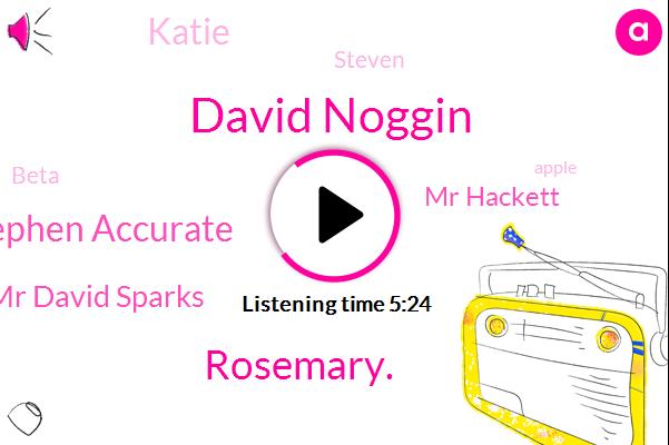 MAC,David Noggin,Rosemary.,Stephen Accurate,Mr David Sparks,Developer,Beta,Apple,WWE,Mr Hackett,HAW,Sparks,Katie,Steven