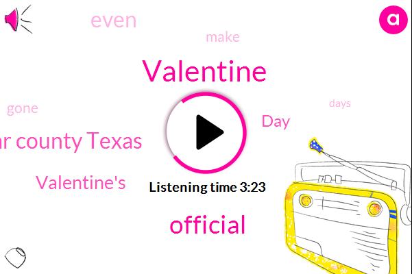 Valentine,Official,Bear County Texas
