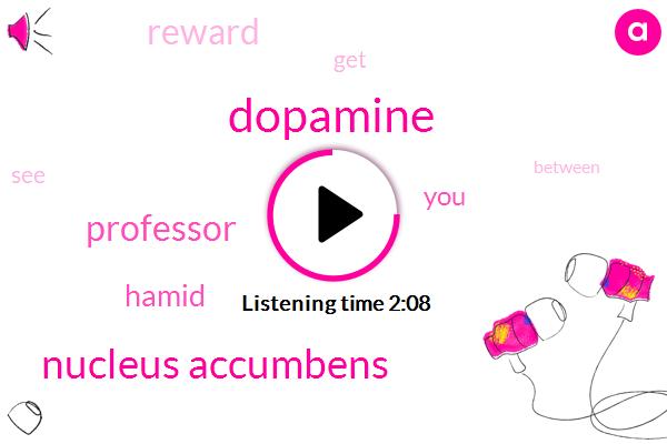 Dopamine,Nucleus Accumbens,Professor,Hamid