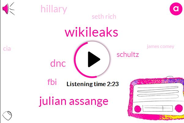 Wikileaks,Julian Assange,DNC,FBI,Schultz,Hillary,Seth Rich,CIA,James Comey,Bernie Sanders,Debbie Watson,Twenty Thousand Dollar,Three Weeks