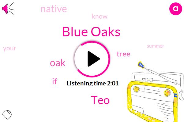 Blue Oaks,TEO