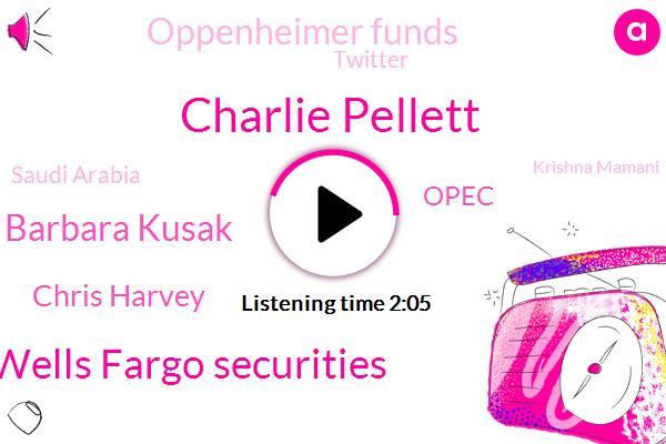Bloomberg,Charlie Pellett,Wells Fargo Securities,Barbara Kusak,Chris Harvey,Opec,Oppenheimer Funds,Twitter,Saudi Arabia,Krishna Mamani,United States,Chief Investment Officer,Fund Manager,Facebook,Texas,Algeria,Apple