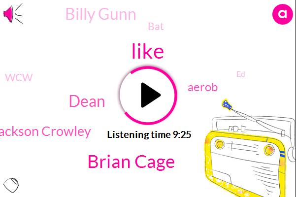 Brian Cage,Dean,Jackson Crowley,Aerob,Billy Gunn,BAT,WCW,ED,Jerry,Russell,Altos,Jerry Lenses,Lynn,Austin,Iowa,Johnstown,Mexican Lucia