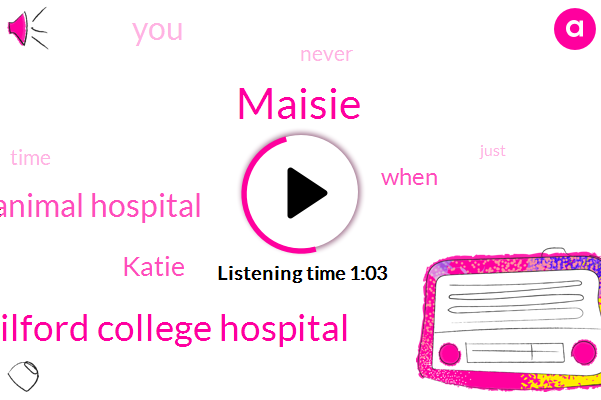 Maisie,Guilford College Hospital,Guilford College Animal Hospital,Katie