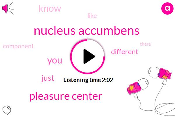 Nucleus Accumbens,Pleasure Center