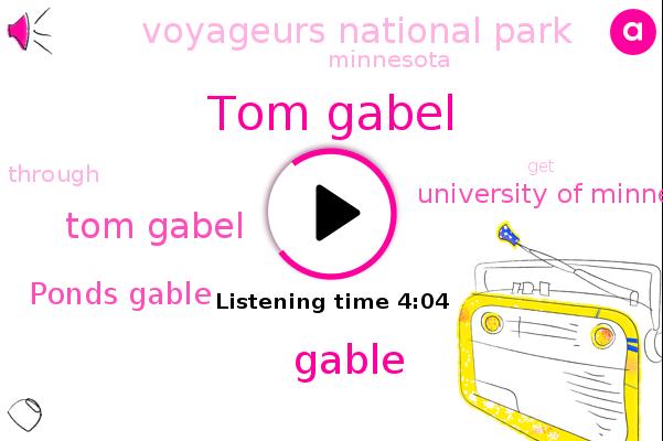 Tom Gabel,University Of Minnesota Conservation,Voyageurs National Park,Gable,Minnesota,Ponds Gable