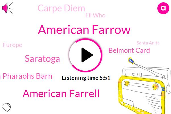 American Farrow,American Farrell,Saratoga,American Pharaohs Barn,Belmont Card,Carpe Diem,Eli Who,Europe,Santa Anita,Joel Stone,Carolina,Chad Brown,Philly,Winstar,Ashford Stud,Kirwin,Two Year