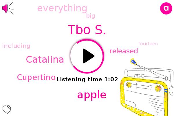 Apple,Catalina,Cupertino,Tbo S.