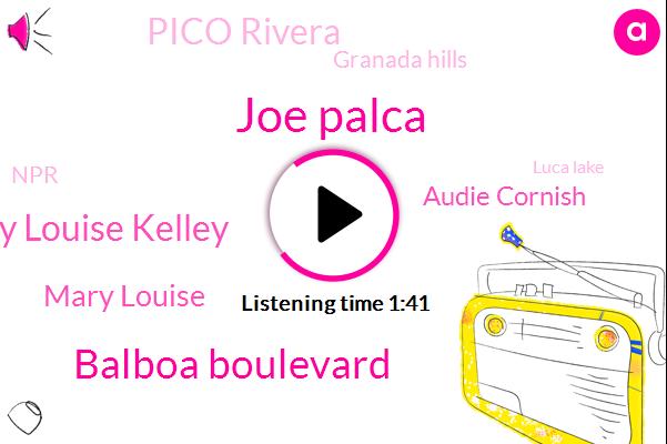 Joe Palca,Balboa Boulevard,Mary Louise Kelley,Mary Louise,Audie Cornish,Pico Rivera,Granada Hills,NPR,Luca Lake,Jet Propulsion Laboratory,Puerto Ranch,Pasadena,California