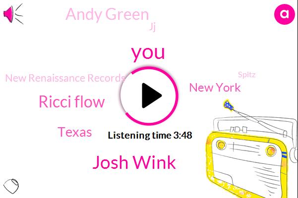 Josh Wink,Ricci Flow,Texas,New York,Andy Green,JJ,New Renaissance Records,Spitz,Richie,Swisher House,Houston,Years,Craigslist,UK,Kaleen,DNC,Simpson,Maryland,East Coast,Davis
