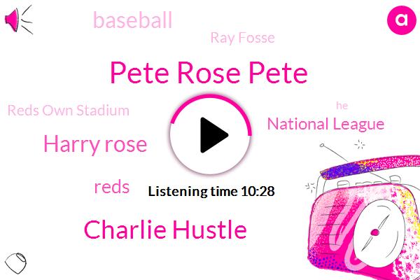 Pete Rose Pete,Charlie Hustle,Harry Rose,Reds,National League,Ray Fosse,Reds Own Stadium,Boston,Baseball,American League,MVP,Barber,Fossey,Jim Hickman,Chicago Cubs,NPR,Mitt