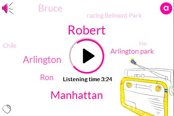 Robert,Manhattan,Arlington,RON,Arlington Park,Bruce,Racing Belmont Park,Chile,MEL,Niger,Ryan Ding,Two Furlongs
