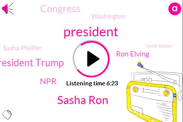 President Trump,Sasha Ron,NPR,Ron Elving,Congress,Washington,Sasha Pfeiffer,Scott Simon,Editor,CDC,Senate,Twitter,Nashville,Sasha,Joe Parka,United States,Fizer