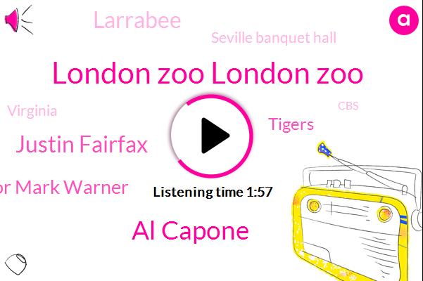 London Zoo London Zoo,Al Capone,Justin Fairfax,Senator Mark Warner,Tigers,Larrabee,Seville Banquet Hall,Virginia,CBS,Assault,Robson,JIM,One Hundred Nine Thousand Nine Hundred Dollars,Forty Years