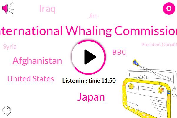 International Whaling Commission,Japan,Afghanistan,United States,BBC,Iraq,JIM,Syria,President Donald Trump,International Whaling Japan,Iceland,Alan Johnston,President Trump,Victoria Gill,Damascus,President Assad,Assad Government