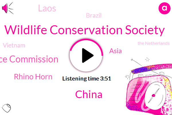 Wildlife Conservation Society,China,Wildlife Justice Commission,Rhino Horn,Asia,Laos,Brazil,Vietnam,The Netherlands