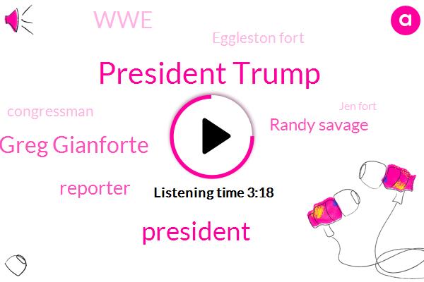 President Trump,Greg Gianforte,Reporter,Randy Savage,WWE,Eggleston Fort,Congressman,Jen Fort,Hyman Roth,Montana,John,Three Quarters,Two Years