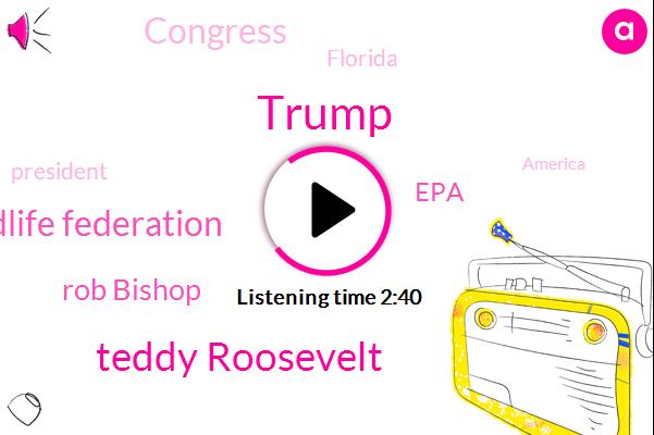 Donald Trump,Teddy Roosevelt,National Wildlife Federation,Rob Bishop,EPA,Congress,Florida,President Trump,America,Nixon,Sixty Days