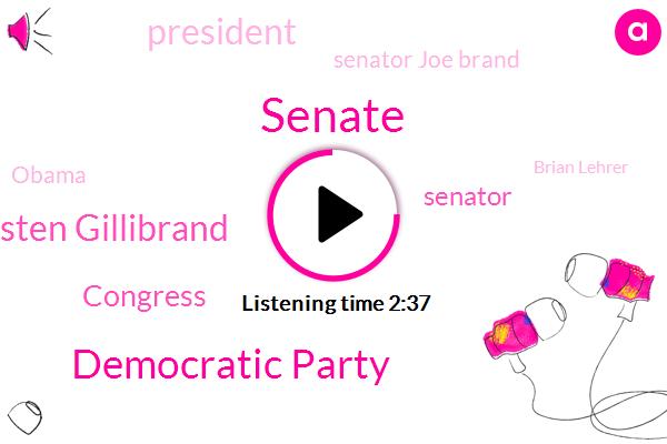 Senate,Democratic Party,Senator Kirsten Gillibrand,Congress,Senator,President Trump,Senator Joe Brand,Barack Obama,Brian Lehrer,New York,Limbaugh