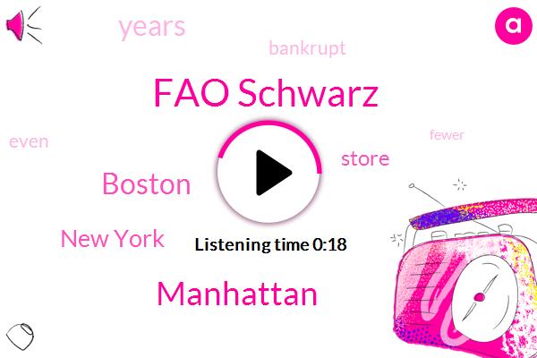 Fao Schwarz,Manhattan,New York,Boston,Fifteen Years,Three Years
