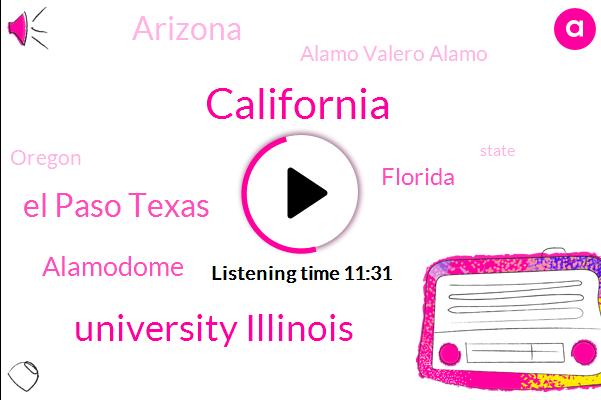 California,University Illinois,El Paso Texas,Alamodome,Florida,Arizona,Alamo Valero Alamo,Oregon