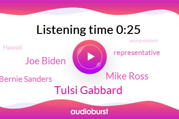 Tulsi Gabbard,Mike Ross,Representative,Hawaii,Vice President,Joe Biden,Senator,Bernie Sanders