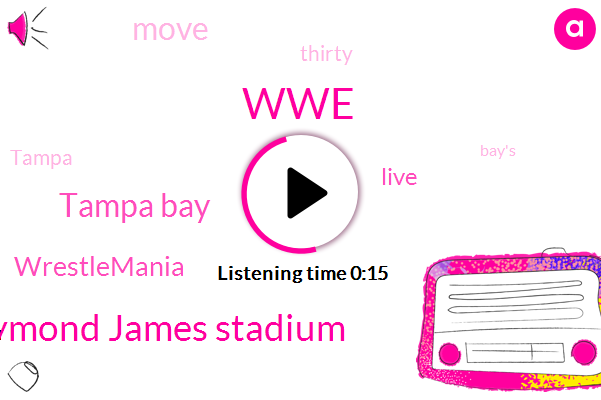 WWE,Tampa Bay,Raymond James Stadium