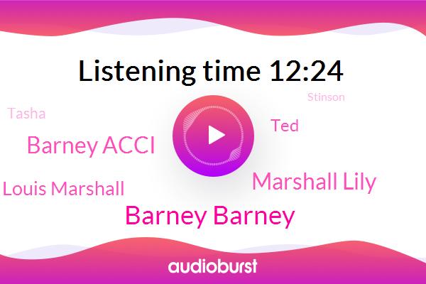 Barney Barney,Partner,Marshall Lily,Barney Acci,Louis Marshall,TED,New York City,Tasha,Stinson,Bob Barker