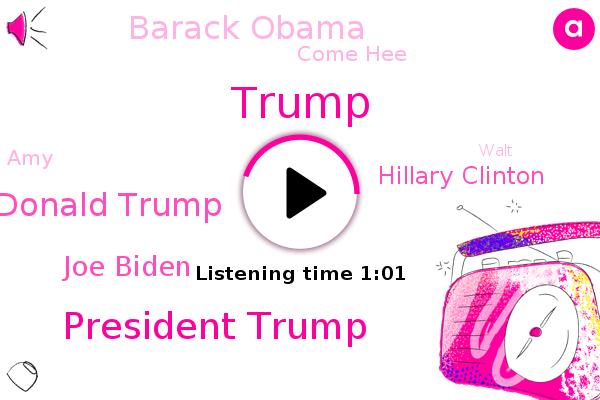 President Trump,Donald Trump,Joe Biden,Hillary Clinton,Barack Obama,Come Hee,Deplorables,Hollywood,AMY,Walt,Barrett,Writer
