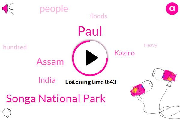Songa National Park,Assam,India,Paul,Kaziro