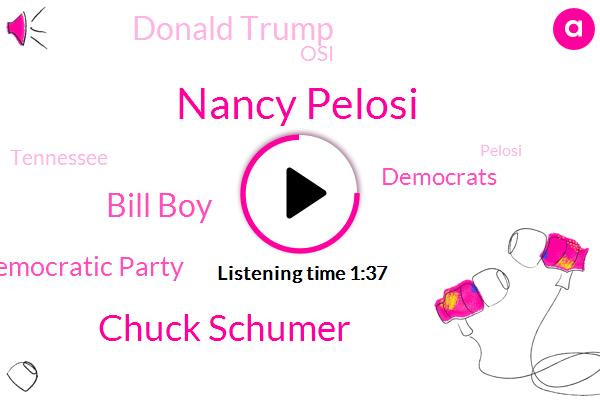 Nancy Pelosi,Chuck Schumer,Bill Boy,Democratic Party,Democrats,Donald Trump,OSI,Tennessee