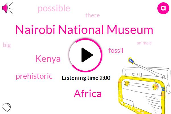 Africa,Nairobi National Museum,Kenya,Twenty Two Million Years,Forty Million Years