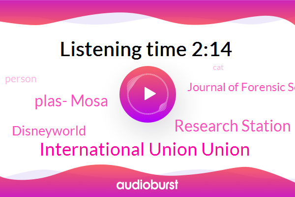 Plas- Mosa,International Union Union,Journal Of Forensic Science,Disneyworld,Research Station