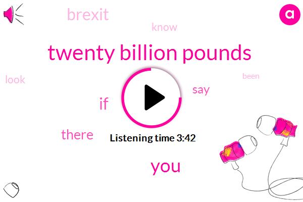 Twenty Billion Pounds