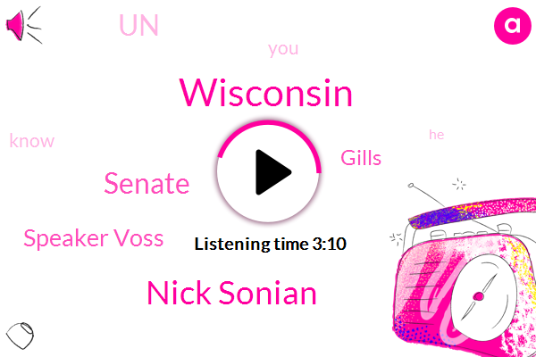 Wisconsin,Nick Sonian,Senate,Speaker Voss,Gills,UN