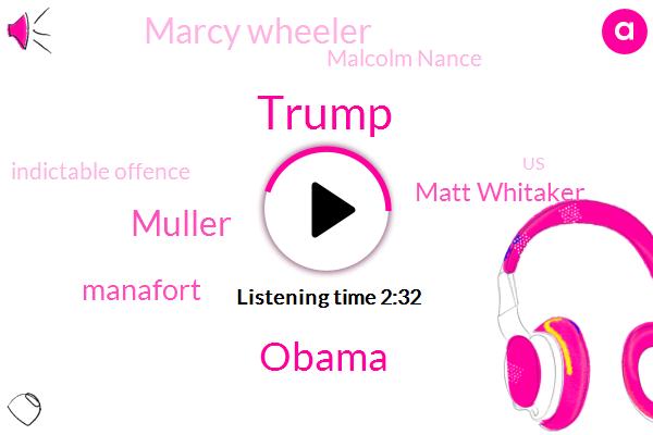Donald Trump,Barack Obama,Muller,Manafort,Matt Whitaker,Marcy Wheeler,Malcolm Nance,Indictable Offence,United States,Meyer,Hillary,Twenty Nine Minutes