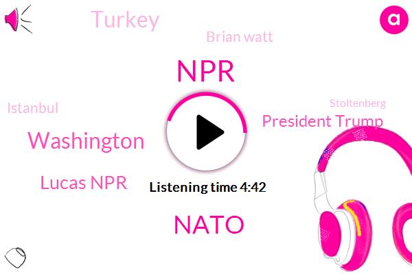 NPR,Nato,Washington,Lucas Npr,President Trump,Turkey,Brian Watt,Istanbul,Stoltenberg,Ryan,Craig Miller,Johnston,Windsor,California,Laurie London,Columbia University,American Civil Liberties Union,Laura Kayla