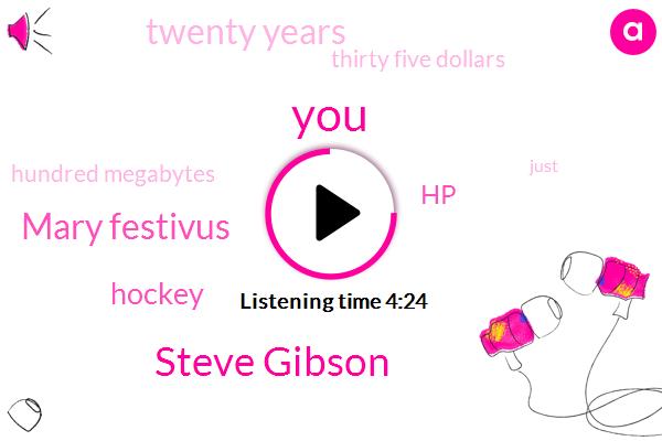 Steve Gibson,Mary Festivus,Hockey,HP,Twenty Years,Thirty Five Dollars,Hundred Megabytes
