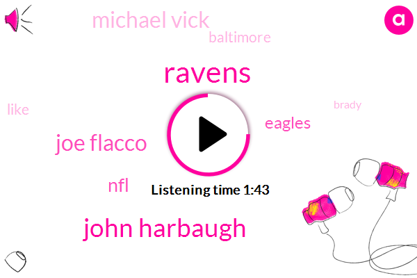 Ravens,John Harbaugh,Joe Flacco,NFL,Eagles,Michael Vick,Baltimore,Brady,Wildcats,Football