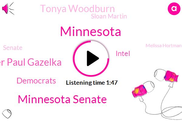 Minnesota,Minnesota Senate,Majority Leader Paul Gazelka,Democrats,Intel,Tonya Woodburn,Sloan Martin,Senate,Melissa Hortman,Senator Jeff Haden