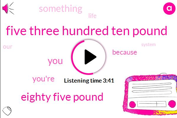 Five Three Hundred Ten Pound,Eighty Five Pound