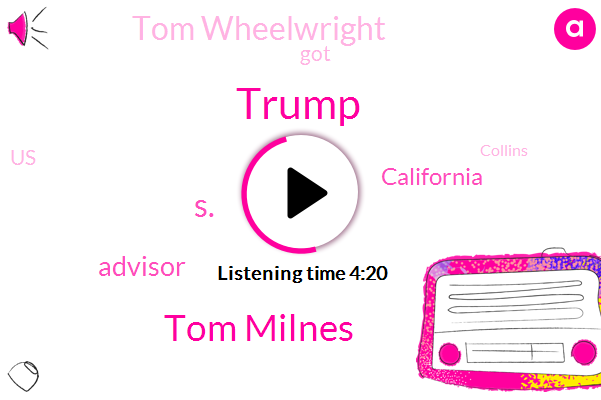 Donald Trump,Tom Milnes,S.,Advisor,California,Tom Wheelwright,United States,Collins,New York,Communist Republic,New Jersey,Hawaii,Illinois,Five Hundred Thousand Dollar