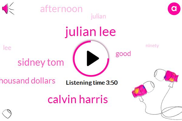 Julian Lee,Calvin Harris,Sidney Tom,One Thousand Dollars