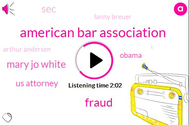 American Bar Association,Fraud,Mary Jo White,Us Attorney,Barack Obama,SEC,Lanny Breuer,Arthur Andersen,T,Department Of Justice