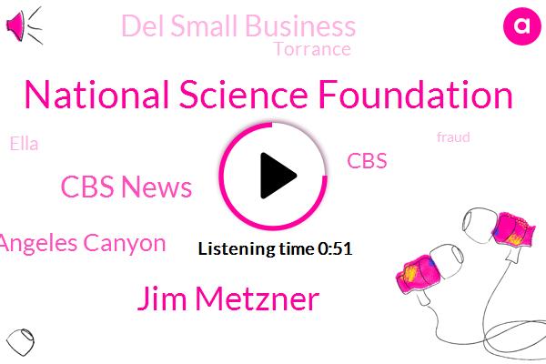 National Science Foundation,Jim Metzner,Cbs News,Los Angeles Canyon,CBS,Del Small Business,Torrance,Ella,Fraud,California,JOE