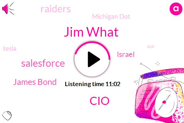 Jim What,CIO,Salesforce,James Bond,Israel,Raiders,Michigan Dot,Tesla,Jack Welch,Keel Island,Faneuil,Chicago,Sarah,Aaron,Green Bay Wisconsin,GE,South Carolina,Johnny,Americaine,Laura