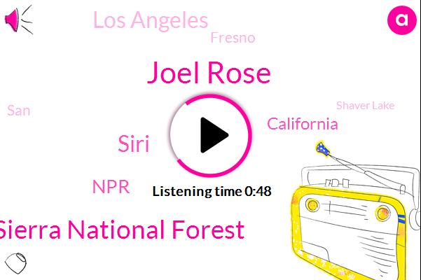 California,Joel Rose,Shaver Lake,Sierra National Forest,Siri,NPR,Los Angeles,Fresno,SAN